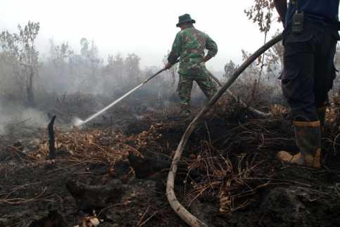 Setelah Singapura, Asap Kebakaran Hutan di Riau Akan Selimuti Malaysia