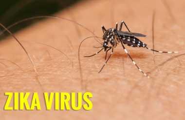 Lebih dari 40 Orang di Singapura Terjangkit Virus Zika