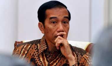 \Mantan Gubernur Bank Sentral Nigeria Beri Penghargaan ke Jokowi   \