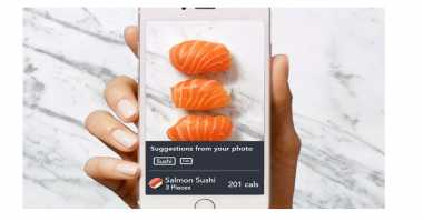 Aplikasi Pengukur Kalori Makanan Berdasarkan Foto