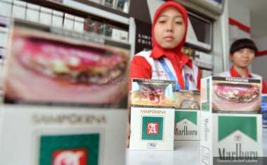 \   Alasan Pemerintah Tak Naikkan Harga Rokok hingga Rp50 Ribu   \