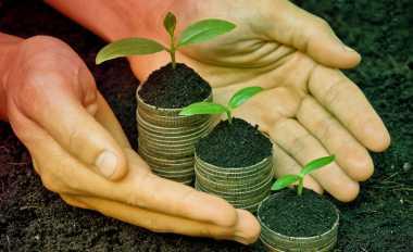 \TERPOPULER: Sederet Investasi Menggiurkan Tahun Ini   \