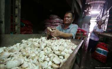 \TERPOPULER: RI Bakal Miliki Pusat Produksi Bawang Putih\