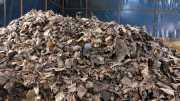 INSPIRASI BISNIS: Pria Ini Raup Jutaan Rupiah dari Limbah Alam