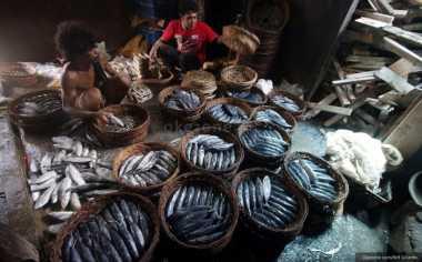 \KKP: Perbanyak Sumber Protein dengan Konsumsi Ikan \