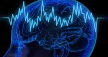 Ilmuwan Temukan Bagian Otak yang Dapat Pulihkan Ingatan