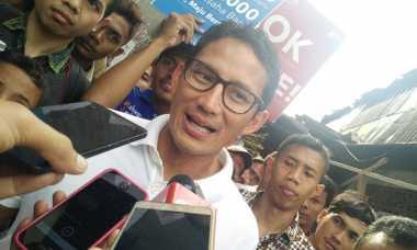 Kampanye Pilgub DKI, Sandiaga Berenang dari Pulau ke Pulau