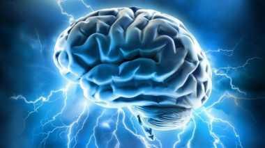 Trik Meningkatkan Kemampuan Otak (1)