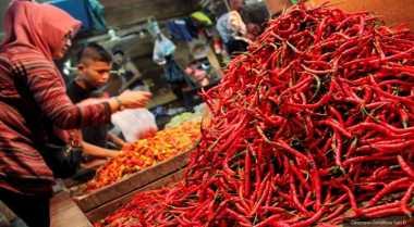 \Harga Cabai Rawit Merah Tetap Rp150.000 per Kg\