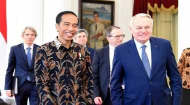 \Industri Kayu Jadi Bidikan Kunjungan Delegasi Prancis ke Jokowi\