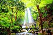 Curug 7 Cilember Destinasi Wisata Air Terjun Terbaik di Puncak