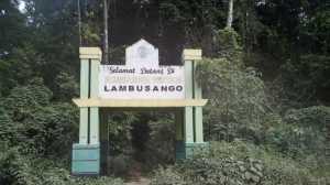 Berlibur di Pulau Buton, Tak Lengkap Sebelum Mampir ke Hutan Lambusango