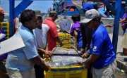 Pelabuhan Perikanan Terbengkalai, KKP Bakal Sulap Jadi Tempat Wisata