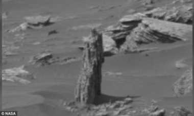 Pemburu Alien Temukan Bukti Tumbuhan yang Hidup di Mars