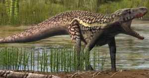 Fosil Diduga Nenek Moyang Buaya Ditemukan