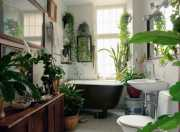 Kamar Mandi Makin Sejuk dengan Tumbuh-tumbuhan seperti Ini di Dalamnya