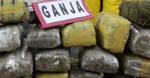 Jaksa Teliti Berkas Kasus 7 Mahasiswa Pesta Ganja di Jambi