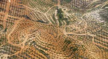 \Urus Sertifikat Tanah Masih Bertele-tele, Kerja BPN Dipertanyakan\