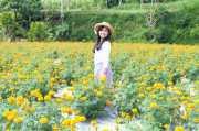 Mencumbu Jutaan Bunga di Desa Belok Bali