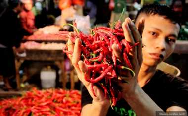 \BUSINESS HITS: Baru Puasa, Cabai Rawit Merah Sudah 'Lebaran' ke Rp65.370/Kg   \