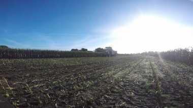 \BUSINESS HITS: Sektor Pertanian Dihantui Perubahan Iklim\