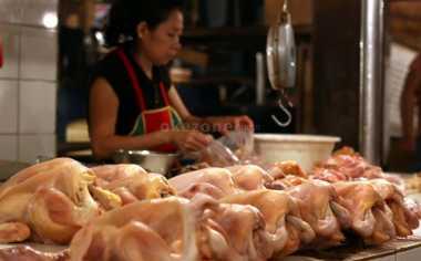 \Diserbu Pembeli, Harga Daging Ayam Melonjak Hingga Rp40.000/Kg\