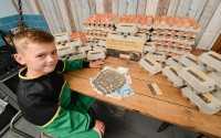 Bocah 8 Tahun Asal Inggris Raup Untung Ratusan Juta dari Jualan Telur Ayam, Jadi Terinspirasi?