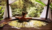 3 Aktivitas Menarik Saat Liburan di Ubud, Mulai Spa hingga Jelajahi Hutan Kera