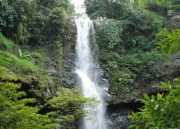 UNCOVER INDONESIA: Fantastis! Lebih dari 5 Air Terjun Ada di Desa Karang Dalam Lahat