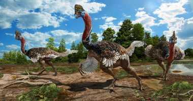 Wow! Dinosaurus Berjambul Unik Mirip Kalkun Raksasa Ditemukan di China