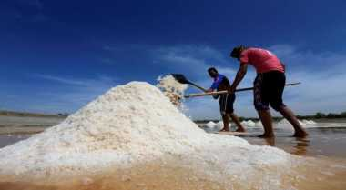 \Impor Garam, Produksi Dalam Negeri Harus Diperhatikan\