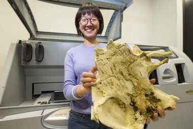Astaga! Ilmuwan Temukan Ikan Berusia 400 Juta Tahun yang Memiliki Rahang Mirip Manusia