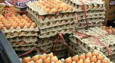\BUSINESS HITS: Gila! Harga Telur Ayam Melambung dari Rp6.238/Kg Jadi Rp28.354/Kg   \