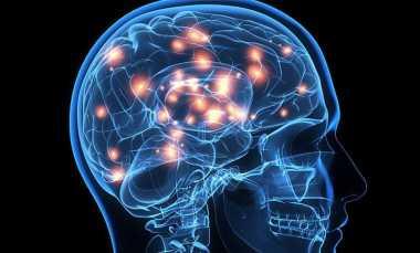 Memindai Otak Manusia Bisa Ketahui Nasib Masa Depan, Apakah Mungkin?