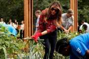 Keren! Melania Trump Panen di Kebun Buatan Michelle Obama