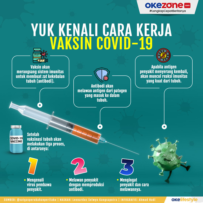 Okezone Infografis :: Yuk Kenali Cara Kerja Vaksin