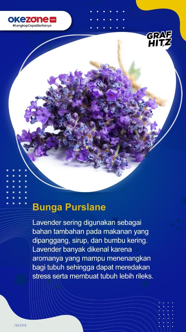 Bunga yang Bisa Dimakan untuk Kesehatan -