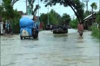 7 Titik Banjir di Tanggamus, dari Pekon Sedayu hingga Pekon Kacapura