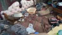 Hidup Sebatang Kara, Nenek Uho Terbaring Sakit Bersama Ayam dan Kucing