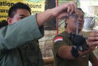 Pelaku Tinggalkan Jejak, BBKSDA Selidiki Pembantaian Lutung Jawa di Jalur Pendakian Gunung Butak