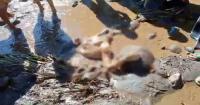 Sosok Mayat Terbelah Dua Ditemukan Warga di Sungai Lereng Bromo