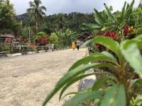 Balada Murid SD di Daerah Blank Spot Pedalaman Bengkulu  1