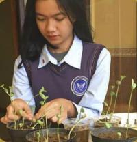 Wujudkan Green School, SMA Pradita Dirgantara Berinovasi Melalui Bank Kedelai