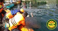 Sampan Tiba-Tiba Dihantam Ombak, Nelayan Tewas Tenggelam