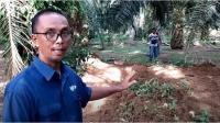 Heboh Gundukan Tanah di Lokasi 3 Bocah Hilang di Langkat