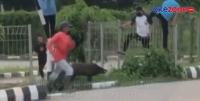 Dikejar Babi Hutan, Pengunjung Kawasan Jakabaring Sport City Berhamburan