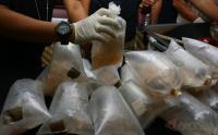 Edhy Prabowo Kena OTT KPK, PBNU Jauh Hari Tegaskan Larang Ekspor Benih Lobster