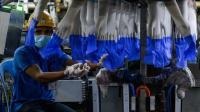 2.500 Karyawan Positif Covid-19, Pabrik Sarung Tangan di Malaysia Tutup