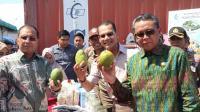 Gubernur HM Nurdin Abdullah: Pertanian Sulsel Berpotensi untuk Dunia