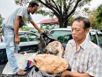 Nelayan Thailand Kaya Mendadak, Temukan Muntahan Paus Terbesar Seharga Rp45 Miliar